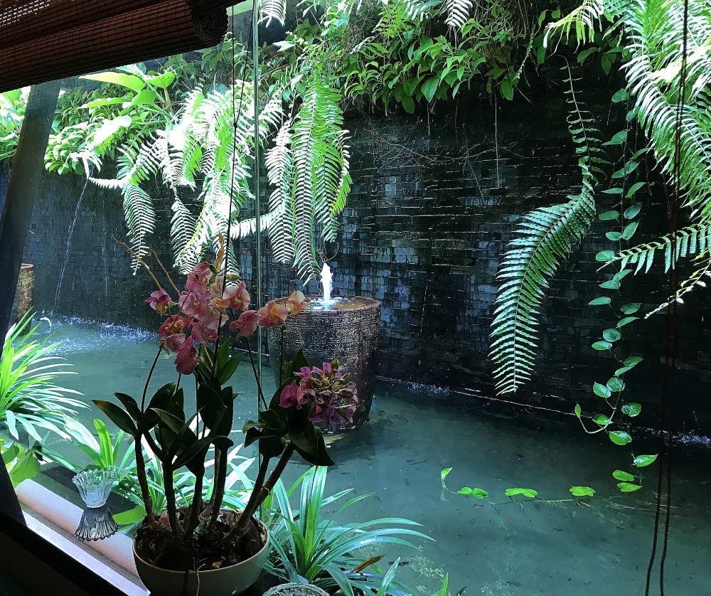 DIVANA 室内から見えるプールの様子