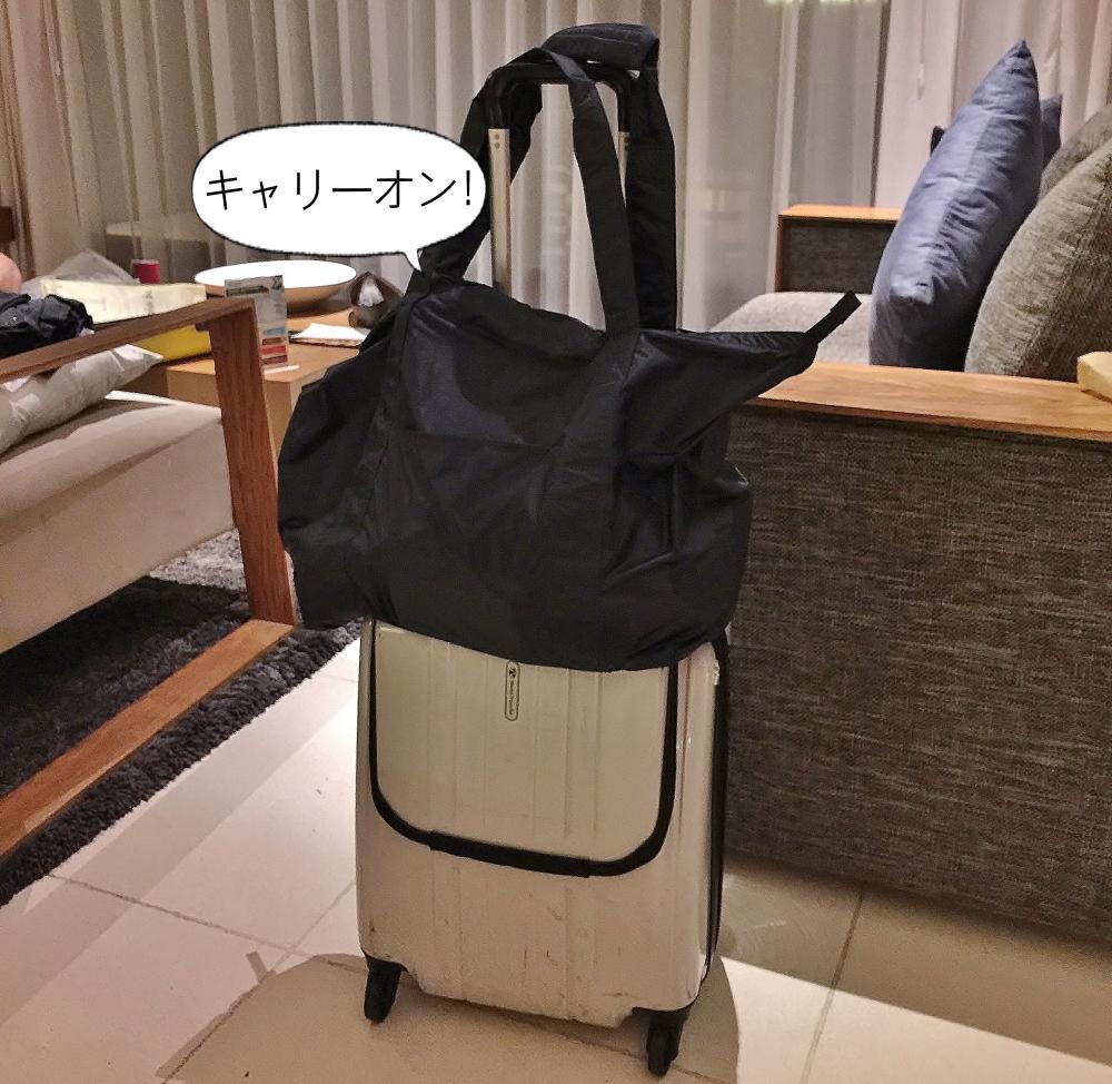 無印良品 トラベルバッグ
